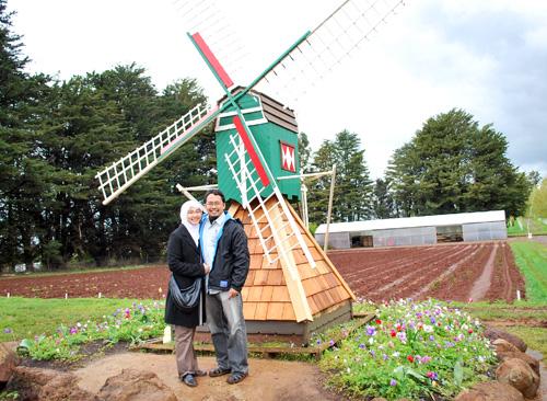 intanzidni_windmill